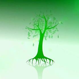 Chương trình: Vì một tương lai xanh